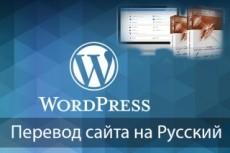 Перенесу ваш сайт с DLE на Wordpress 9 - kwork.ru