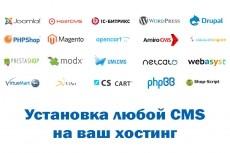 Установлю любую CMS на хостинг. Нет хостинга подарим 15 - kwork.ru