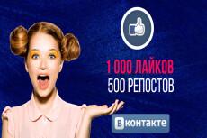 1000 Репостов +1000 Лайков ВКонтакте, комплект 13 - kwork.ru