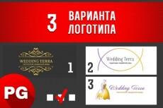 Создам 3 варианта простого логотипа на заказ 21 - kwork.ru