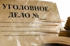 Проконсультирую о перспективах уголовного дела 25 - kwork.ru