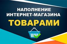 Наполнение сайта. Перенос контента, работаю с Visual Composer 21 - kwork.ru