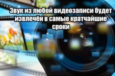Сопоставлю(наложу) звук с видеозаписью по Вашим указаниям 3 - kwork.ru