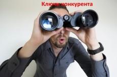Keys.so: 25 сайтов (все отчеты) выгрузка всех ключей конкурентов 11 - kwork.ru
