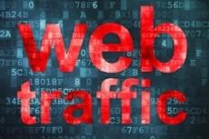 Качественный Трафик из поисковых систем Яндекс и Google с гарантией 7 - kwork.ru