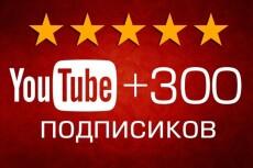 Добавлю 250 подписчиков на ваш канал YouTube | Ручная работа, без списаний 17 - kwork.ru