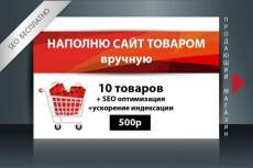 Ручное наполнение интернет-магазина товаром, контентом 22 - kwork.ru