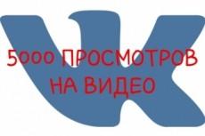 6000 просмотров видео в ВКонтакте 10 - kwork.ru
