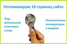 Оптимизирую 1 страницу не вошедшую в ТОП. Вылет в ТОП+3 жирные ссылки 13 - kwork.ru