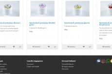 Перенос магазинов на Opencart 8 - kwork.ru