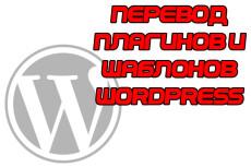 Переведу ваш шаблон или плагин для CMS WordPress на русский язык 4 - kwork.ru
