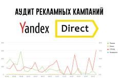 Аудит Я. Директ 20 - kwork.ru