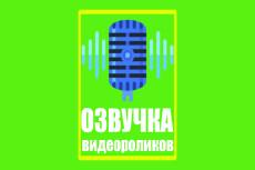 Озвучка вашего Видео 4 - kwork.ru