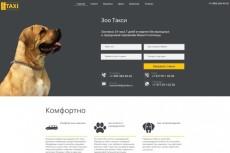 Сделаю копию любого одностраничного сайта (Landing Page) 12 - kwork.ru