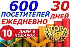 Трафик на сайт. 130-150 посещений ежедневно на 70 дней. Бонус 17 - kwork.ru