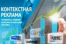 Идеально проработанный Яндекс.Директ до 50 ключевых слов 14 - kwork.ru