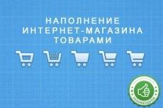Перенесу ваш сайт с одного хостинга на другой 13 - kwork.ru