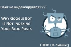 Установлю и настрою скрипт автоматически наполняемого видео сайта 4 - kwork.ru