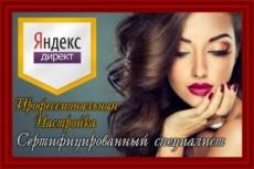 Аудит контекстной рекламы Яндекс Директ + SEO аудит сайта в подарок 5 - kwork.ru