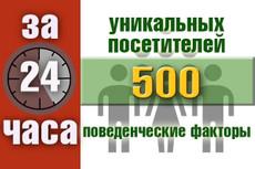 Увеличу количество уникальных посетителей от 50 до 500 в сутки + Бонус 3 - kwork.ru
