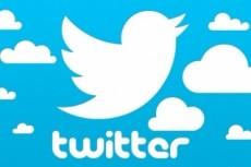 1700 подписчиков на Ваш аккаунт в Twitter 19 - kwork.ru