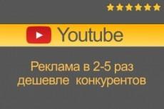 Приведу Трафик из официальной рекламы на youtube 11 - kwork.ru