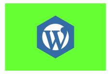 Расширение функционала сайта на WordPress и WooCommerce 14 - kwork.ru