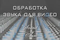 Тюнинг  вокала одного трека до 4 мин 4 - kwork.ru