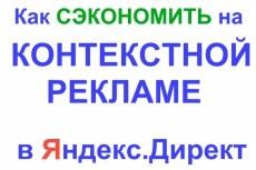 Создание бюджетной РК в  Яндекс.Директ 5 - kwork.ru