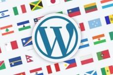 Переведу тему, шаблон или плагин WordPress на русский язык 9 - kwork.ru