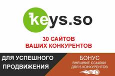 Сбор точной частотности для 9000 ключевых запросов 5 - kwork.ru