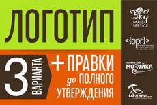Создам логотип в 3-ех вариантах 6 - kwork.ru