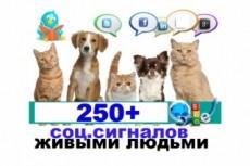 Продвижение страниц сайта 20 - kwork.ru