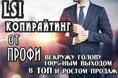 Продающий текст в ТОП под нейросетевые алгоритмы и для конверсии 12 - kwork.ru