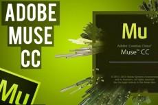 Набор контактных форм для Adobe Muse 6 - kwork.ru