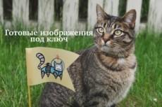 Более 230.000 изображений по цене кворка 8 - kwork.ru