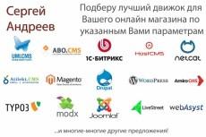 Выявлю и подскажу как устранить ошибки внутренней поисковой оптимизации сайта 6 - kwork.ru