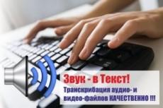 Сделаю текстовую версию аудио, видео, телефонных разговоров 16 - kwork.ru
