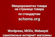 Микроразметка для вашего сайта 13 - kwork.ru