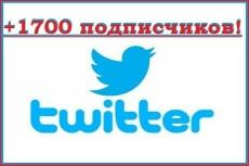 1700 подписчиков на Ваш аккаунт в Twitter 16 - kwork.ru