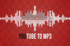 Из видео в аудио 21 - kwork.ru