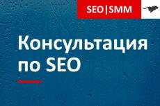 Консультация в Skype по продвижению вашего сайта на Wordpress 3 - kwork.ru