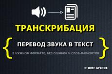 Напечатаю текст с аудио, видеофайла 3 - kwork.ru