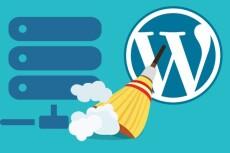 Установлю Wordpress на хостинг, настрою тему 22 - kwork.ru