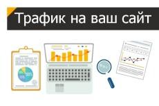 8000 просмотра сайта + 2000 в подарок 17 - kwork.ru