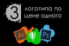 Нарисую профессиональный векторный логотип за один час 22 - kwork.ru