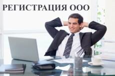 Подготовлю документы для регистрации ООО или ИП 27 - kwork.ru