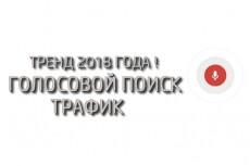 Привлеку 20 000 уникальных посетителей на сайт 13 - kwork.ru