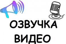 Диктор для вашего проекта. Реклама, дубляж, закадр, IVR 10 - kwork.ru