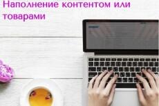 Транскрибация видео и аудиофайлов до 40 минут 16 - kwork.ru